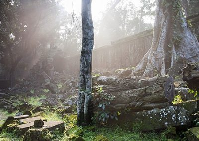 Ta Prohm temple sunrise, Angkor Thom, Angkor Wat Temple Complex, UNESCO World Heritage Site, Siem Reap, Cambodia, Indochina, Southeast Asia, Asia