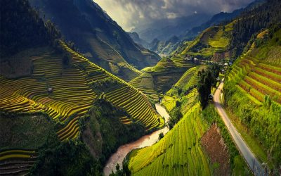 Vietnam Beach and Nature Tour 11Days/10Nights
