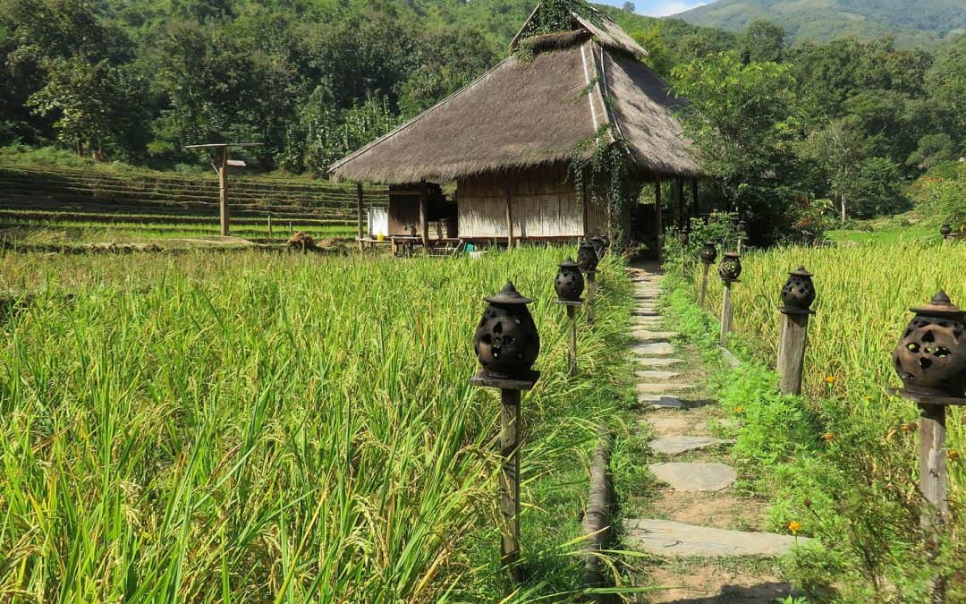 Hilltribe and Kamu Lodge – 2 days/1 nights