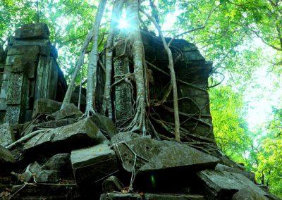 Beng Mealea Temple-Angkor-Siem Rea--Cambodia