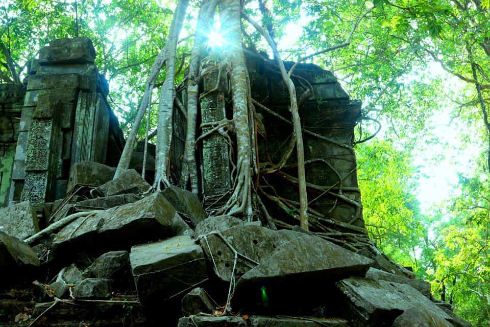 Cambodia Local Life Experience 5Days/4Nights