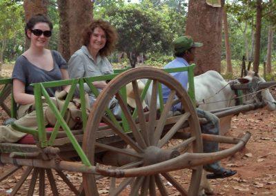 Oxen cart ride-Cambodia