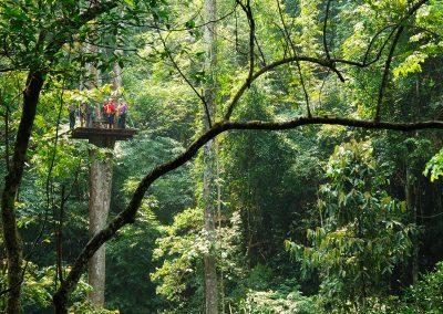 AAT Chiang-Mai-Zipline-Flight-of-the-Gibbon