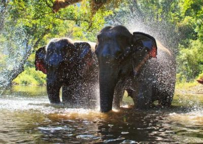 thailand_asia_travel_reviews_page_header_0